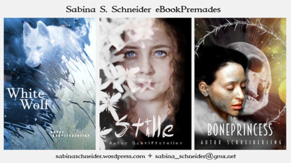 Cover Schneider Beisp. 1